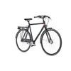 Ortler Motala - Vélo de ville - noir